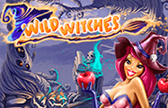 онлайн слоты Wild Witches
